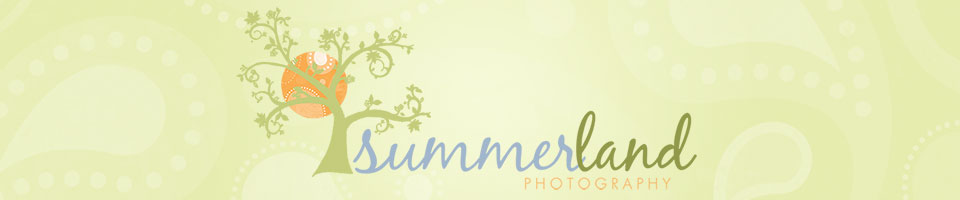Summerland Photography logo